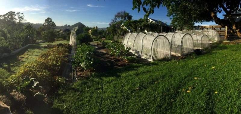 Un proyecto demuestra que con menos de media hectárea de terreno se puede alimentar a 50 familias 2