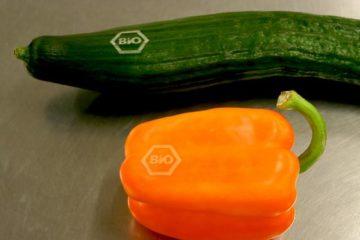 Gran idea: sustituir las etiquetas adhesivas por un marcado láser más ecológico ¡sin pegatinas! ¡sin plásticos! 7