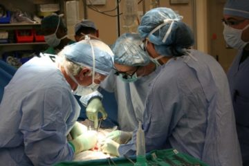 Francia acaba de hacer donante de órganos a todos sus ciudadanos (a menos que te niegues) 14