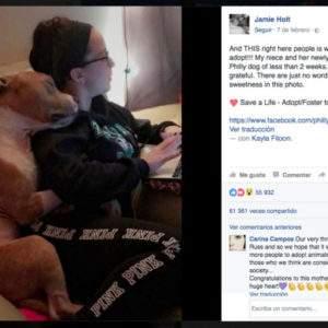 Descubre la historia detrás del abrazo de este entrañable pitbull que está revolucionando Facebook 3