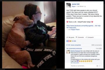 Descubre la historia detrás del abrazo de este entrañable pitbull que está revolucionando Facebook 7