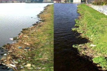 Un holandés limpia un río en cinco semanas e inspira a gente de todo el mundo para hacer lo mismo 4