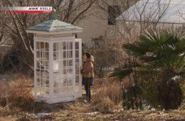 Una cabina telefónica para hablar con los muertos de Fukushima 16