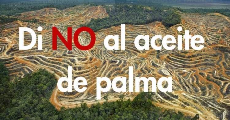 La primera cadena de supermercados que ha dejado de vender productos con aceite de palma, ¿sabes por qué? 1