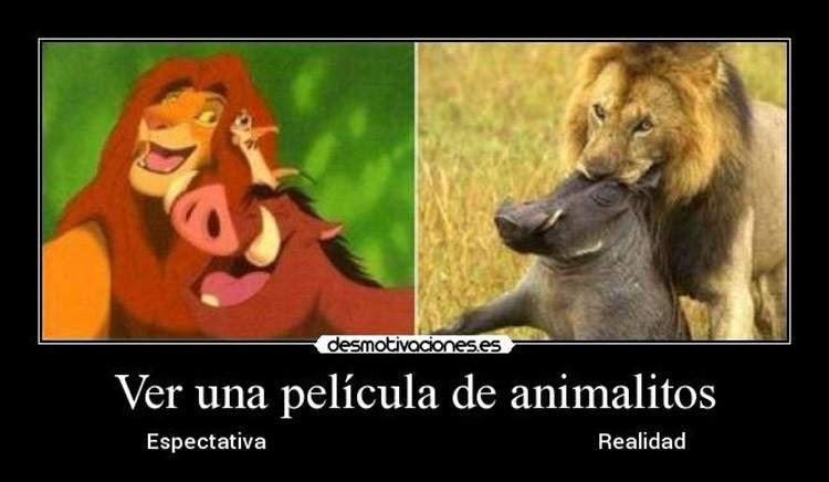 """El """"efecto Walt Disney"""" o por qué creemos que los animales se comportan como personas 3"""