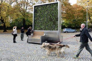CityTree, el panel de musgo que absorbe la contaminación como si fuese 275 árboles 12