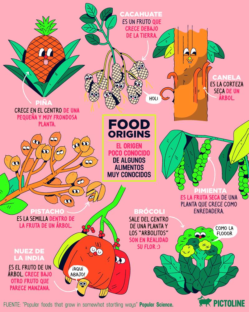 Asúmelo, no tienes ni idea de lo que es saludable: te aclaramos 8 mitos sobre tu alimentación 9