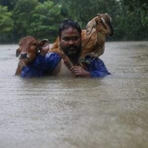 Imágenes de las inundaciones en Asia que los medios ignoran mientras están pendientes de Harvey & Irma 1