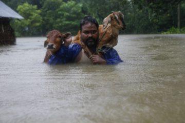 Imágenes de las inundaciones en Asia que los medios ignoran mientras están pendientes de Harvey & Irma 6