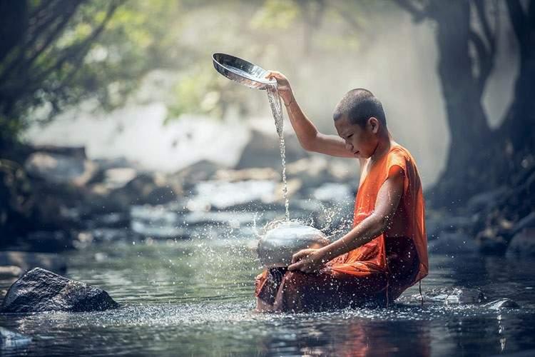 Esta parábola budista nos muestra el poder de la paciencia 1