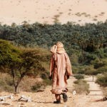 14 países africanos se unen para plantar una gran muralla verde en el Sahara