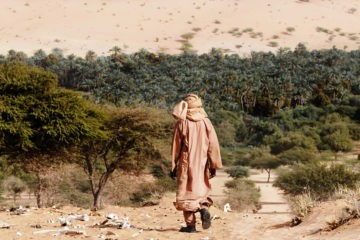 14 países africanos se unen para plantar una gran muralla verde en el Sahara 10
