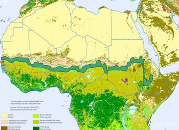14 países africanos se unen para plantar una gran muralla verde en el Sahara 1