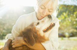 Cuidar a una mascota enferma, la elevada factura emocional de la que nadie habla 14