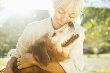 Cuidar a una mascota enferma, la elevada factura emocional de la que nadie habla 10