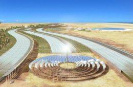 Sahara Forest, la manera de producir en el desierto alimentos de forma sostenible 12