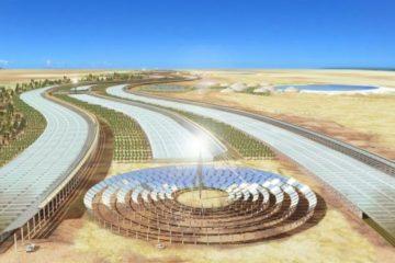 Sahara Forest, la manera de producir en el desierto alimentos de forma sostenible 5