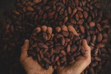 Bye, bye chocolate: la cuenta atrás para decirle adiós al cacao ha comenzado 10