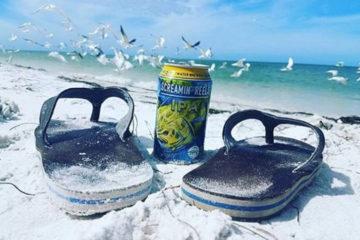 Saltwater Brewery: la cervecera que quiere salvar nuestros océanos 10