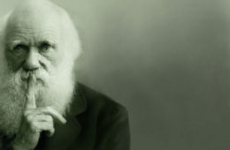 Según Darwin, los debates sobre Dios fueron más allá de las creencias de nuestra educación y herencia social 12