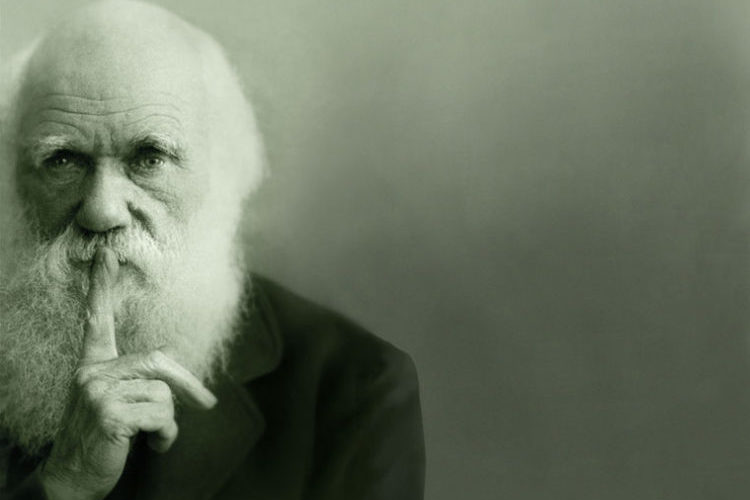 Según Darwin, los debates sobre Dios fueron más allá de las creencias de nuestra educación y herencia social 2