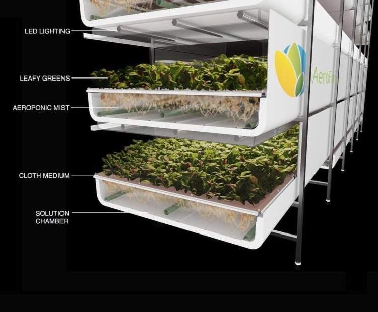 Así es el nuevo sistema de cultivo vertical financiado por IKEA 3