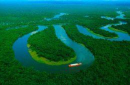 Perú aprueba una ley que permitirá llenar de carreteras la selva amazónica 6