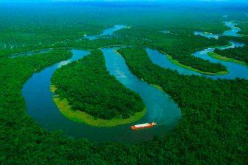 Perú aprueba una ley que permitirá llenar de carreteras la selva amazónica 15