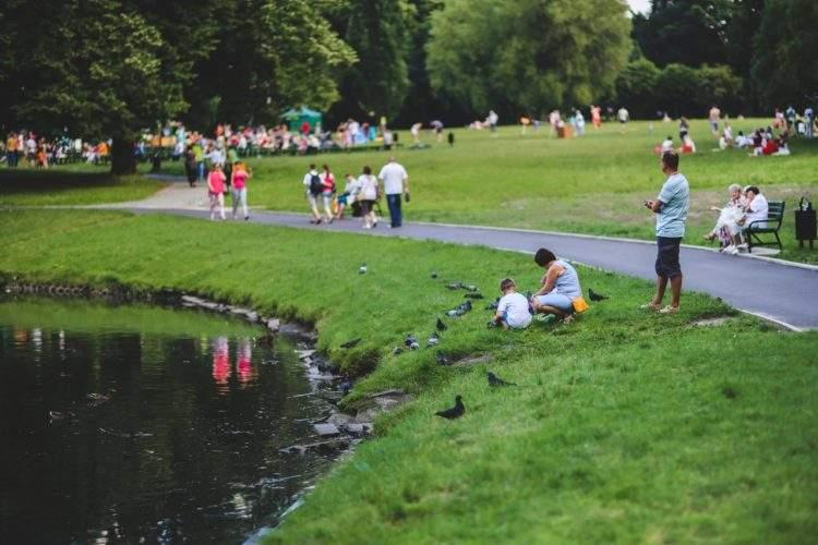 ¡Demostrado! Los niños que juegan en espacios verdes rinden más en la escuela 1