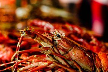 Esta es la historia del cangrejo que sacrificó su pinza para no convertirse en parte de la cena 18