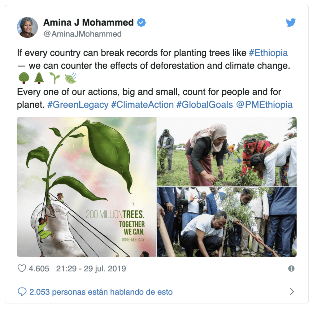 Etiopía siembra 350 millones de árboles en 12 horas batiendo el record mundial para combatir la deforestación 1