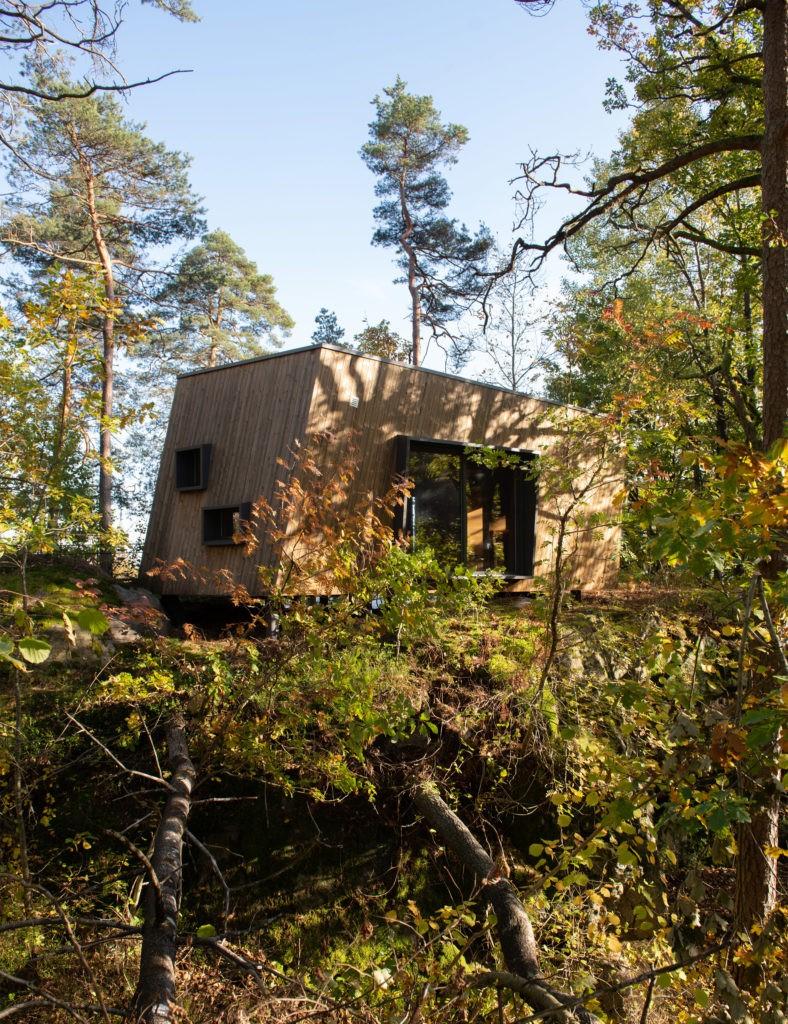 Hospitales en el bosque: la idea noruega para sanar mejor 3