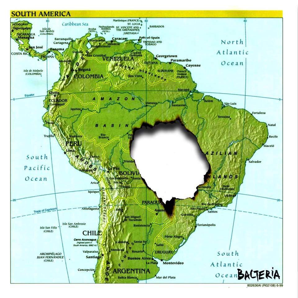 Arde la Amazonia mientras Bolsonaro invita a los medios a mirar a otro lado 8