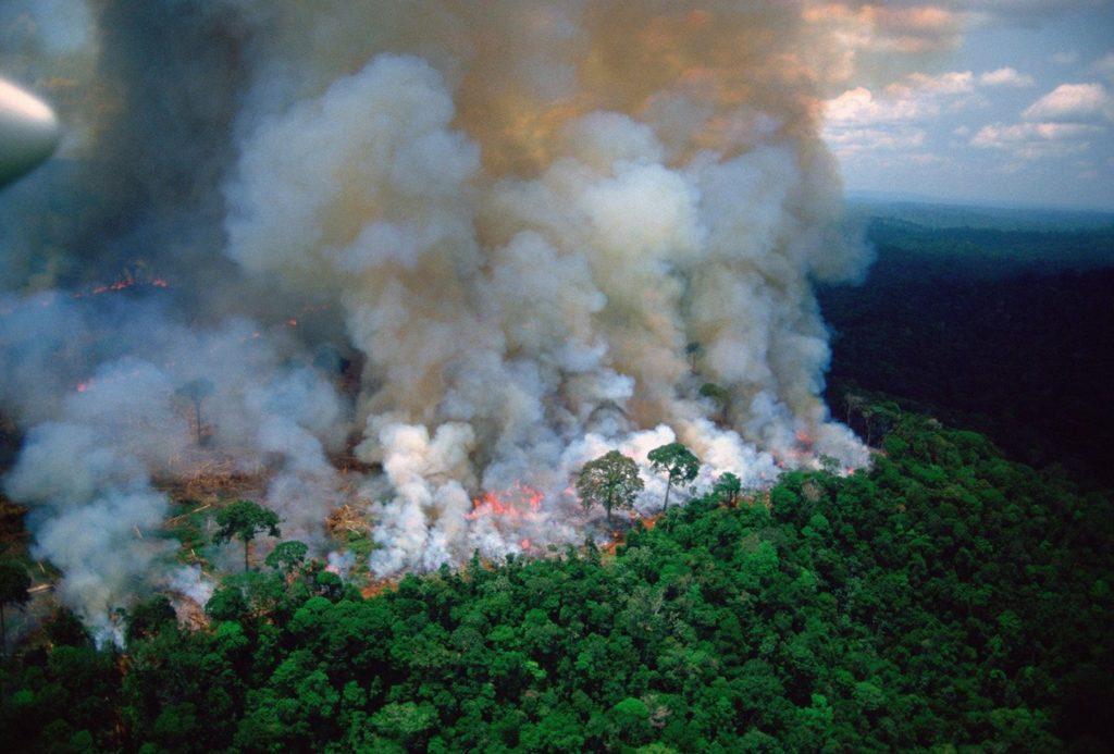 Arde la Amazonia mientras Bolsonaro invita a los medios a mirar a otro lado 6