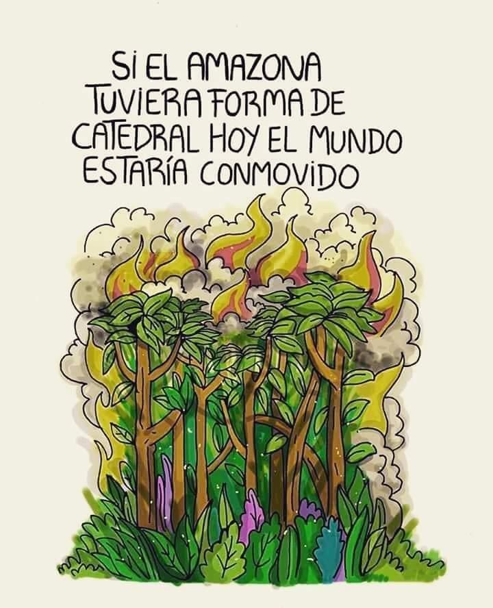 Arde la Amazonia mientras Bolsonaro invita a los medios a mirar a otro lado 7