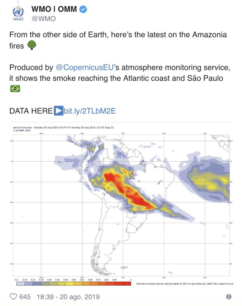 Arde la Amazonia mientras Bolsonaro invita a los medios a mirar a otro lado 3