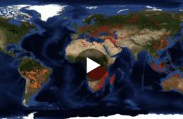 Mapa interactivo de todos los incendios activos, en tiempo real, y que están arrasando el planeta 16