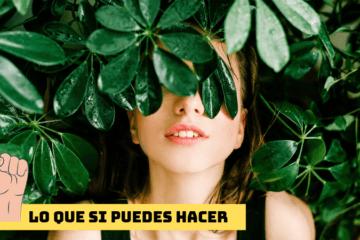 5 razones por las que arde el Amazonas y 5 cosas que puedes hacer para evitarlo (AQUÍ Y AHORA) 2
