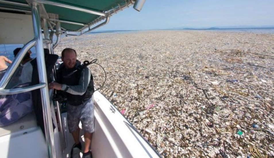"""La verdad sobre la """"isla de plástico"""" que flota en el Pacífico y tiene el tamaño de media Europa 2"""