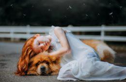 ¿Qué decir a alguien cuya mascota ha fallecido? Ayudemos a sensibilizar a quienes no conocen este dolor 18