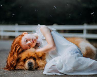 ¿Qué decir a alguien cuya mascota ha fallecido? Ayudemos a sensibilizar a quienes no conocen este dolor 14