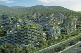 Diseñan la primera gran ciudad-bosque: producirá 900 toneladas anuales de aire limpio 6