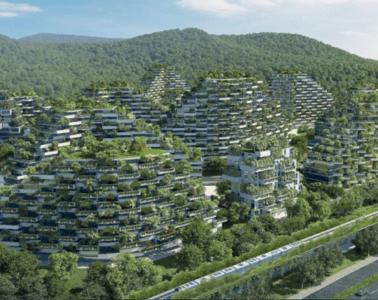Diseñan la primera gran ciudad-bosque: producirá 900 toneladas anuales de aire limpio 14