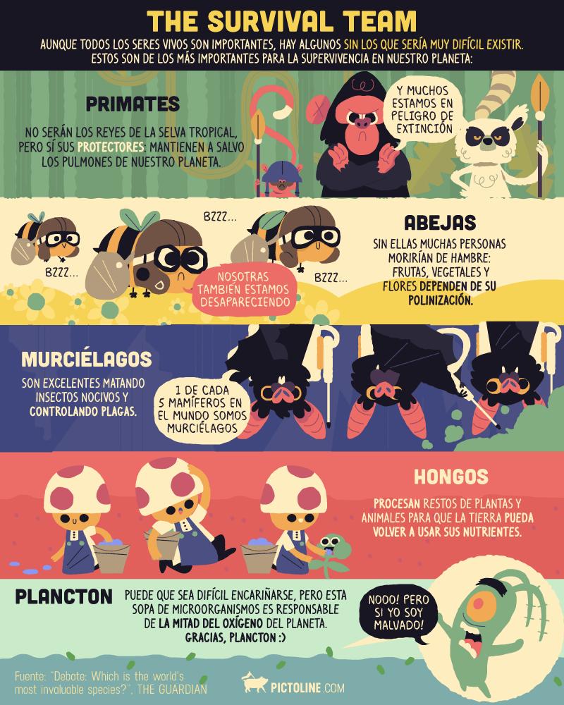 Un descubrimiento esperanzador: el hongo capaz de alimentarse de plástico 3