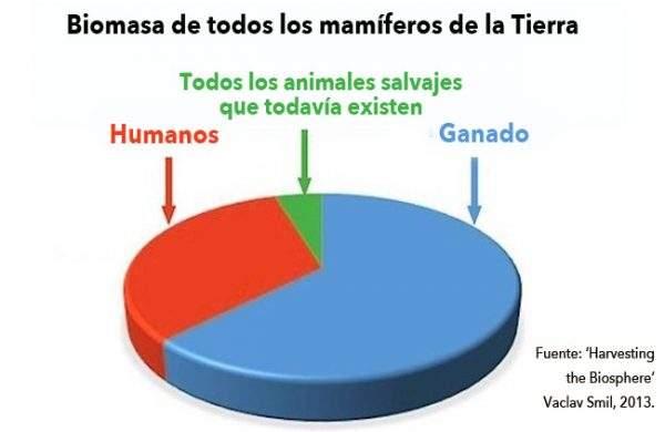 La tierra ha perdido más del 60% de sus animales salvajes los últimos 40 años 3