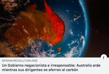 1000 millones de animales muertos y silencio mediático de los incendios ¡hagamos algo! 1