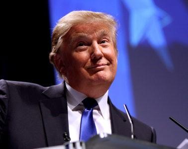 ¿Funciona la solución de Trump contra el Covid-19? 12