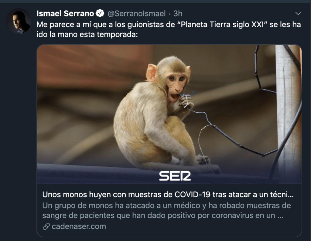 ¡De locos! Unos monos atacan a un técnico de laboratorio y roban unas muestras de COVID-19 3