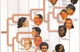 ¿Tiene sentido el racismo para la ciencia? (si existen, seguramente no seas de la raza que imaginas) 2