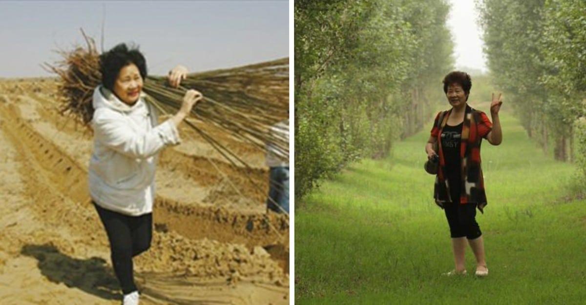 Planta dos millones de árboles para cumplir el último deseo de su difunto hijo y crea un movimiento ecosocial 1